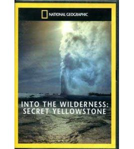 Into the Wildwerness : Secret Yellowstone DVD